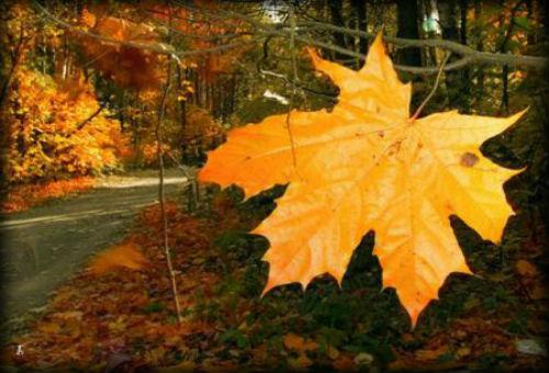 лунный календарь октябрь