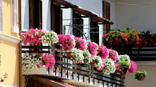 балкон во сне