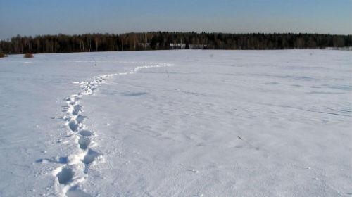 сонник следы от обуви на снегу