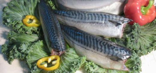 сонник соленая рыба