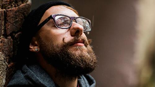 сонник борода