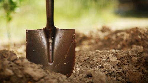 сонник лопата