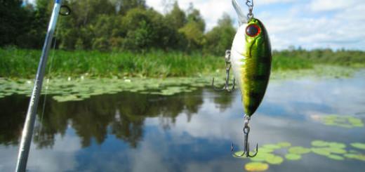 поймать рыбу во сне