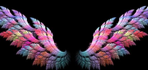 крылья во сне