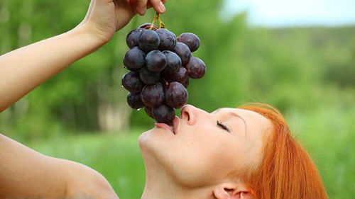 приснилось кушать виноград