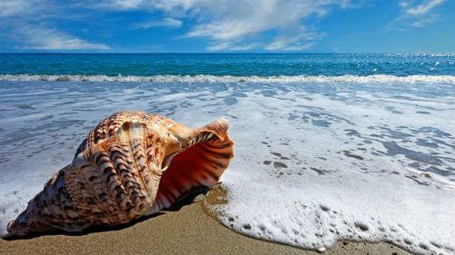 видеть океан или море во сне