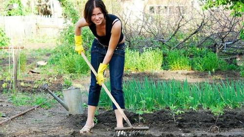 к чему снится огород женщине