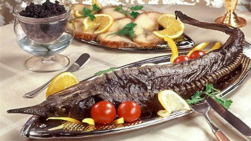 кормить рыбой человека