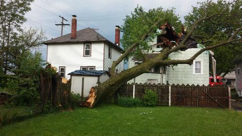 упавшее дерево на дом