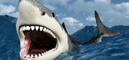 акула нападает во сне