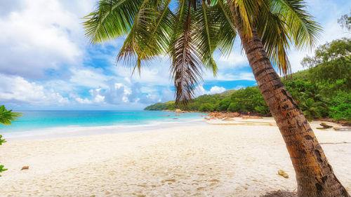 белый песок на берегу во сне