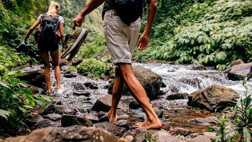 идти вдоль ручья