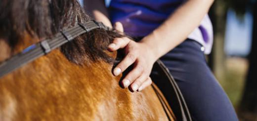 верхом на коне во сне