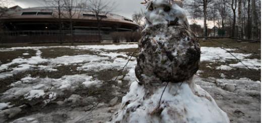 грязный снег во сне