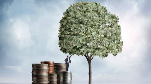 видеть дерево денег