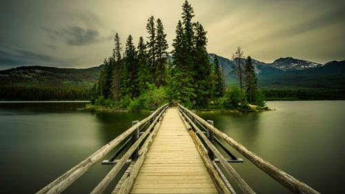 деревянный мост во сне