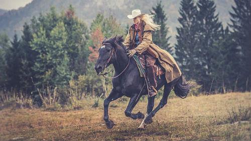 приснилась темная лошадка
