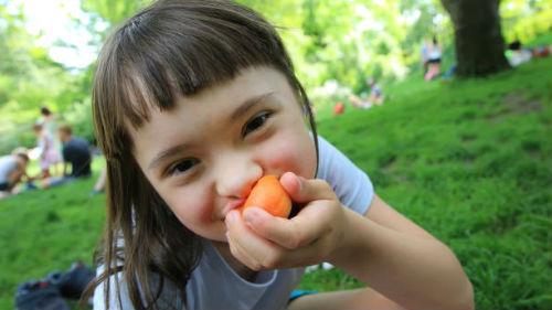 есть абрикосы во сне