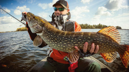 к чему снится держать рыбу в руках