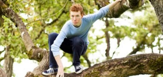 залезть на дерево во сне