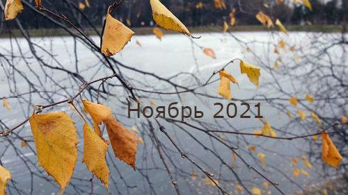 гороскоп на ноябрь 2021