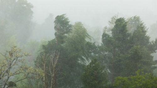 ураган с дождем
