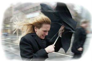 Сонник ветер сильный
