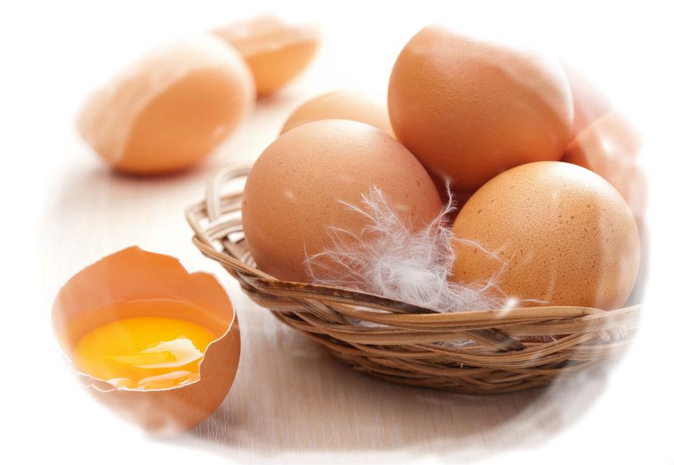 Картинки по запросу картинка яйцо