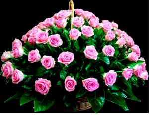 Сонник-толкование цветы