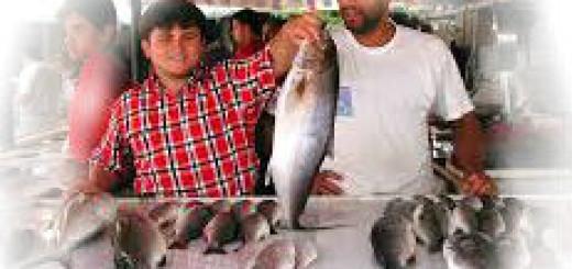 сонник - покупка рыбы