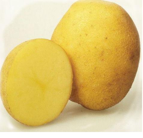картошка снится