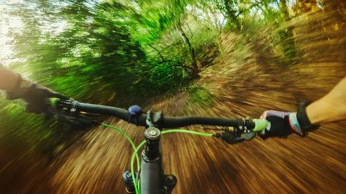 на велосипеде по лесной тропе