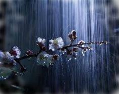 к чему снится погода после дождя во сне