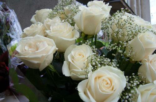 Получать в подарок белые розы во сне