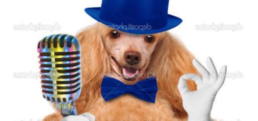 Говорящая собака толкование сонника