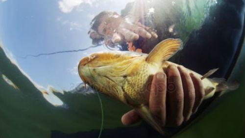 держать рыбу в руках