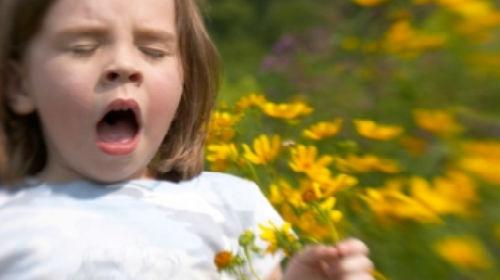 Сонник приснилась аллергия во сне к чему снится аллергия