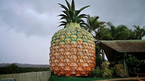 к чему снится ананас
