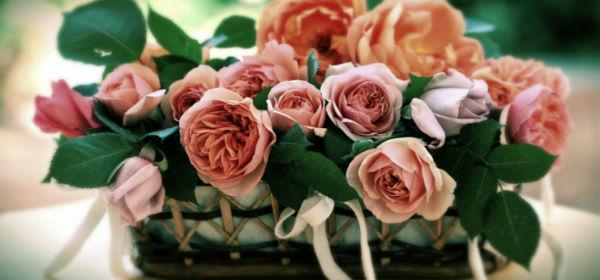 Видеть во сне цветы живые дарят стоимость доставки цветов спб