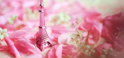 сонник розовый цвет