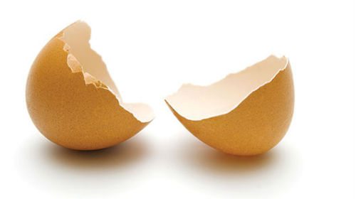 сонник скорлупа от яиц