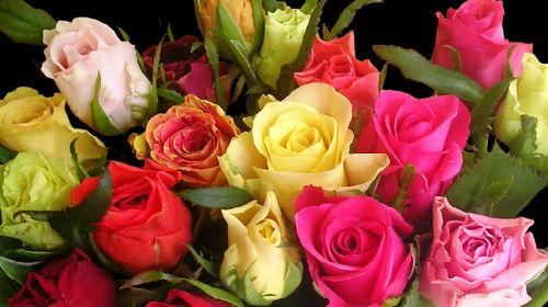 Во сне букет белых роз