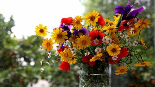 Разрешение экрана и количество цветов