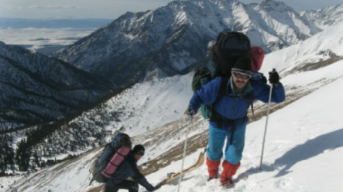 сонник горы скалы в снегу