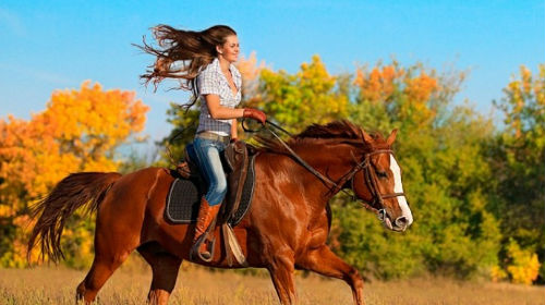кататься на лошади во сне