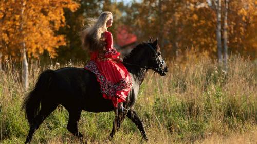 верхом на лошади во сне