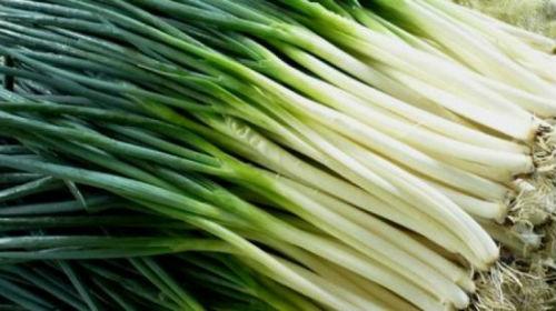 зеленый лук во сне