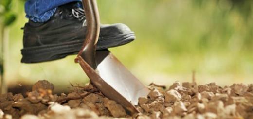 сонник копать
