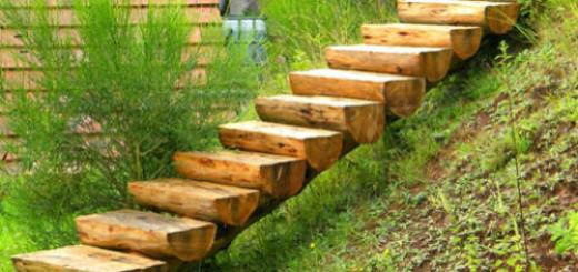 ступеньки из дерева во сне