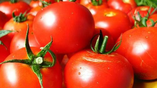 Толкование снов помидоры красные фото